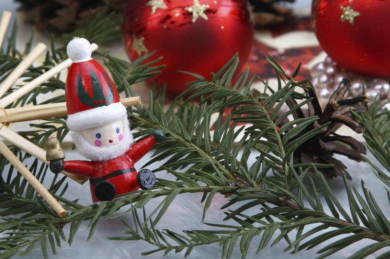 Halten Sie Ihren Weihnachtsbaum länger frisch mit unseren Weihnachtsbaum Pflegetipps