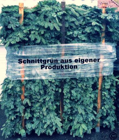 Weihnachtsbaum Holstein Kg garantiert 100% kontrollierte Handarbeit aus dem Norden Deutschlands