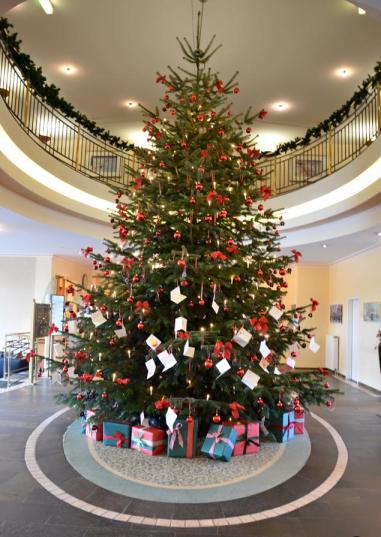Kundenbeispiel - Hoteltanne - Weihnachtsbäume Holstein