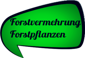 Nordmanntannen Verbraucherschutz Garantie bei Weihnachtsbäume Holstein