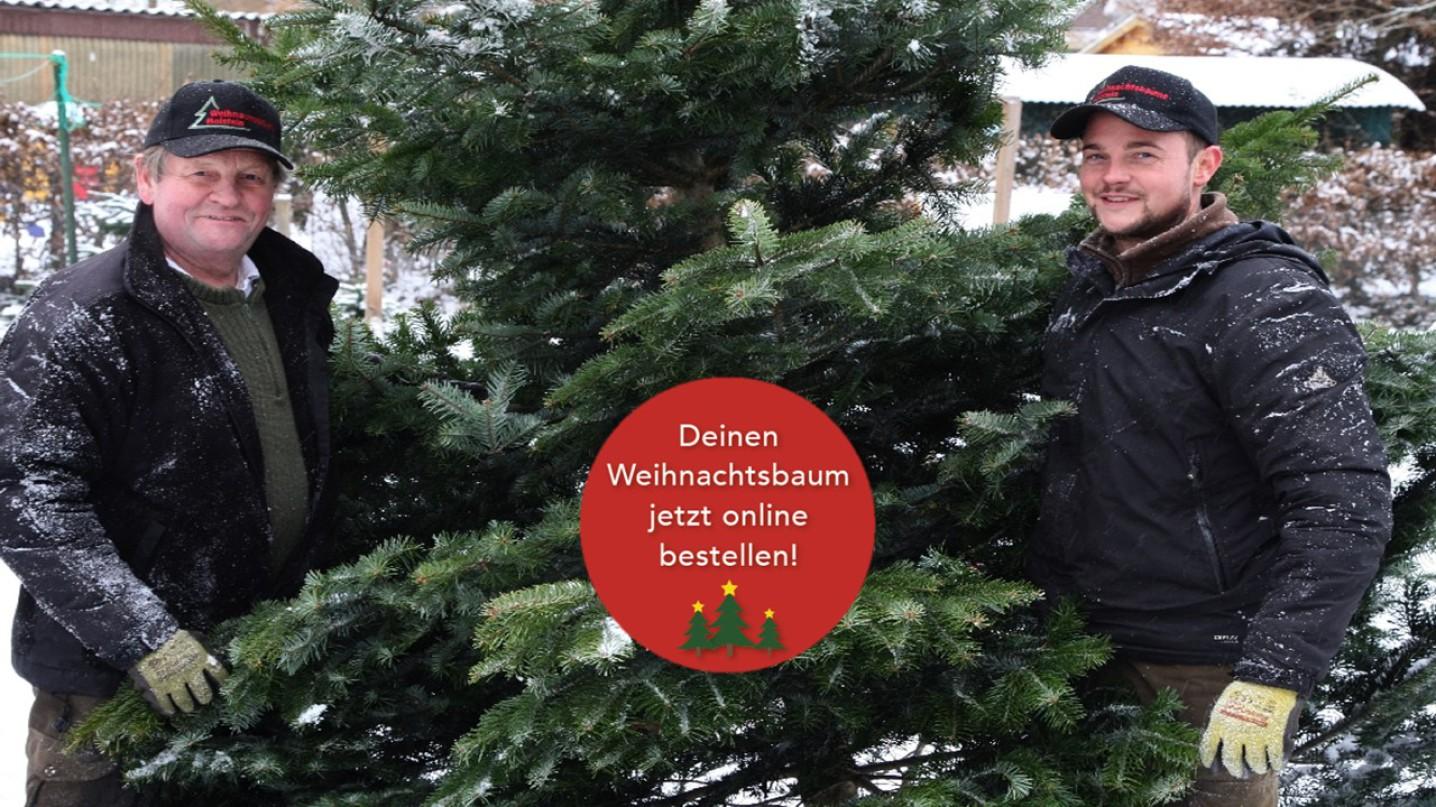 Klicken Sie hier und kaufen Sie Ihren Weihnachtsbaum in unserem neuen Shop einfach online