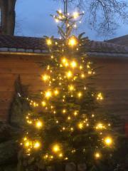 Weihnachtsfeiern mit Weihnachtsbaum Präsentationsständer